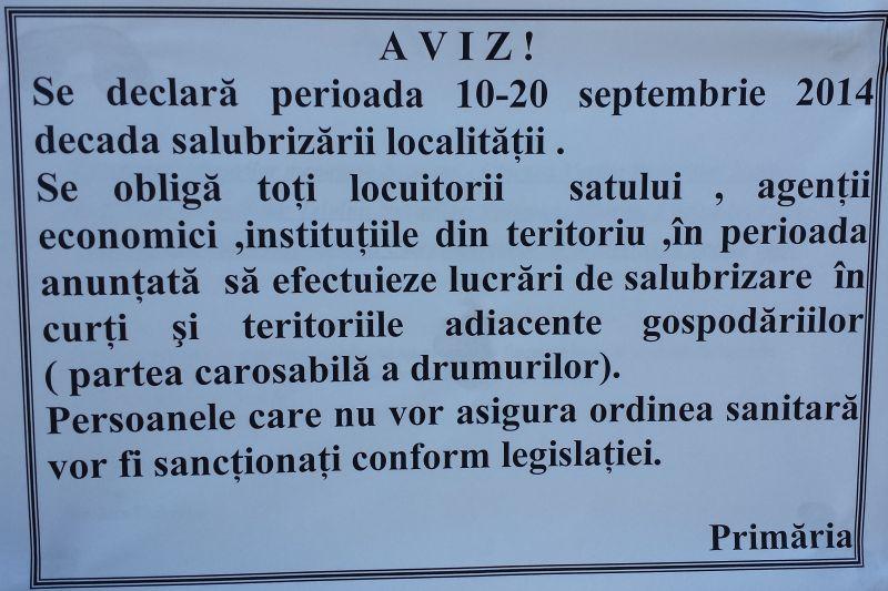 decada_salubriz14